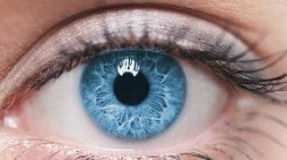 occhi e staminali