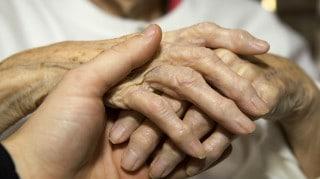 osteoporosi e staminali